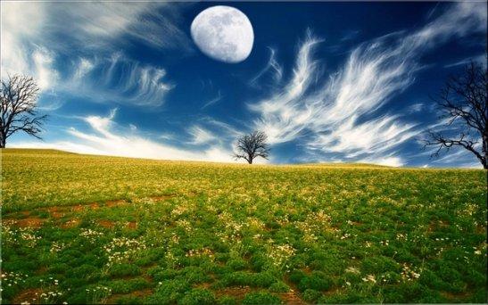 фото - http://pichost.me