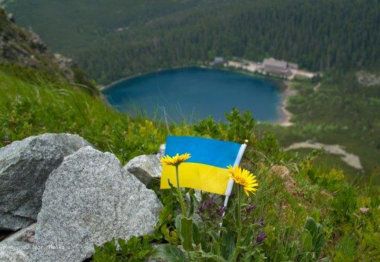 фото з сайту http://igormelika.com.ua