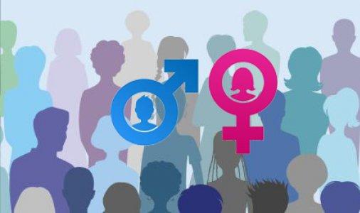 Запрошуємо до участі у Гендерній медіа-школі