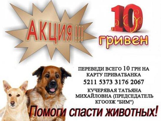 Или покупайте что-то, или просто переведите 10 грн.