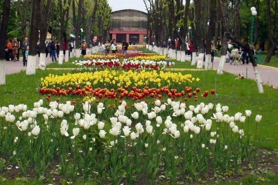 фото - rk-ukrina.com