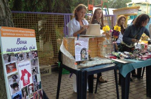 Благотворительная ярмарка - в пользу животных
