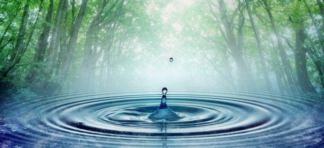Жива вода: Сім цілющих джерел Кіровоградщини