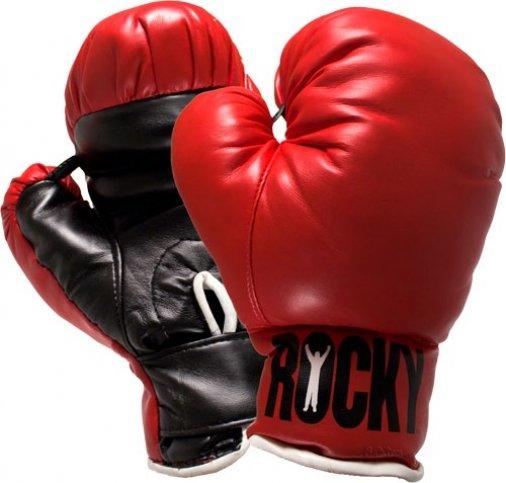 Чемпионат мира по боксу закрылся победой спортсменки из Кировоградской области