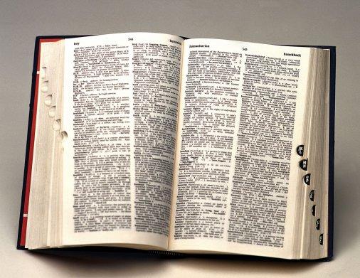 Різнобарвний світ бібліотеки допоміг показати День словника
