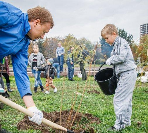 Сто нових дерев та кущів у Кіровограді!