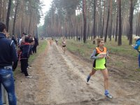 Легкоатлетичний крос в Олександрівці