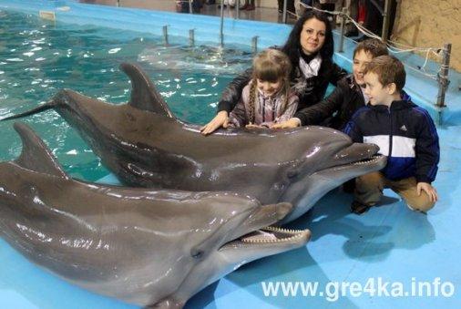 Кіровоградські діти їздили в Одесу спілкуватися з дельфінами