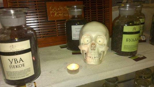 Ведьмы, пауки и привидения поселились в DVA Coffee
