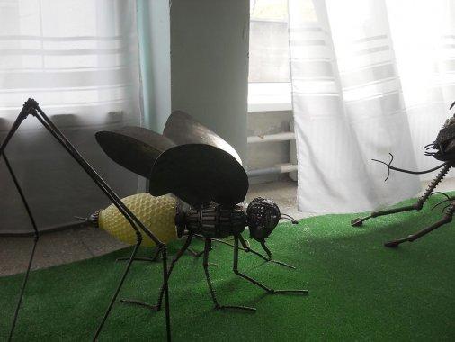 Увага! Гігантські комахи!