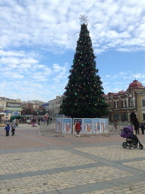 Кіровоградська новорічна ялинка була однією із найвищих в Україні