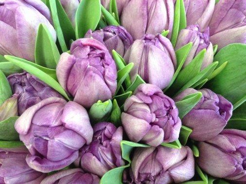 """Нужны цветы к Восьмому марта? Студия """"Елена"""" зовет в гости!"""