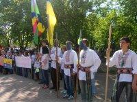 Хода єднання у Новомиргороді