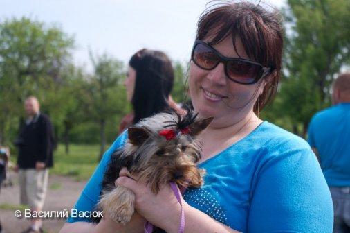 Выставка собак с успехом прошла в Кировограде