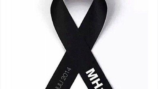 Поліція Нідерландів веде розслідування обставин аварії рейсу MH17