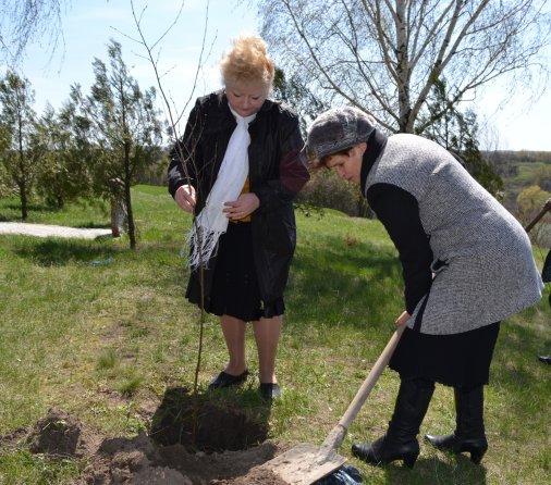 День Довкілля: У Розумівці посаджено дерева!
