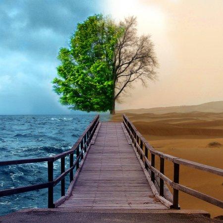 фото - http://eurocert.org.uk