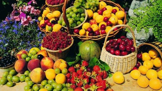 Європейські стандарти безпечності харчових продуктів приживаються в Україні