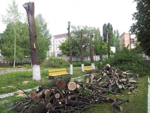 Бачите обрізання дерев до осені? Викликайте поліцію!