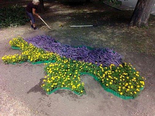 Квіткова карта України з'явилася у Кропивницькому