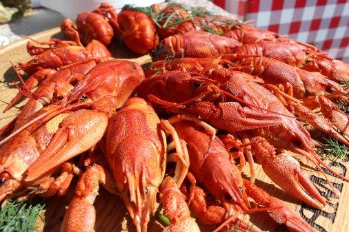 У Дендропарку відбувся фестиваль вуличної їжі