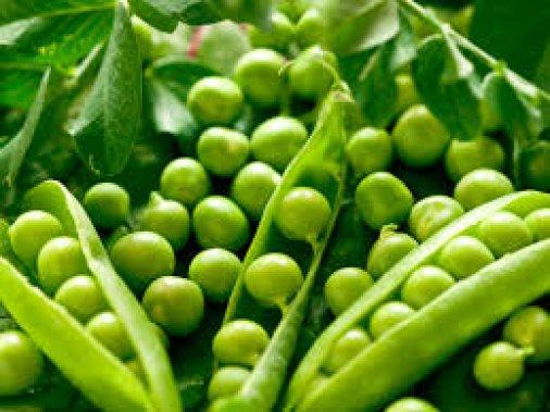 Стрибок цін на зелений горошок: Неурожай чи бажання наживи?