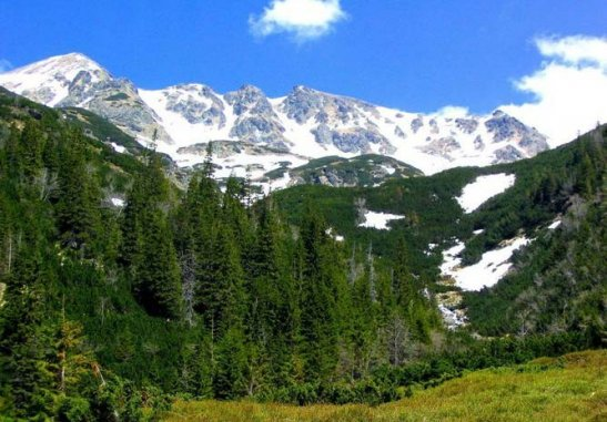 Ліси у Словаччині - фото з сайту http://diamond-travel.com.ua