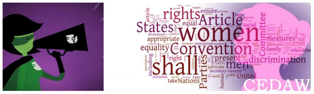 Альтернативний звіт про рівень насильства у відношенні до жінок готує громадськість на розгляд Комітету ООН