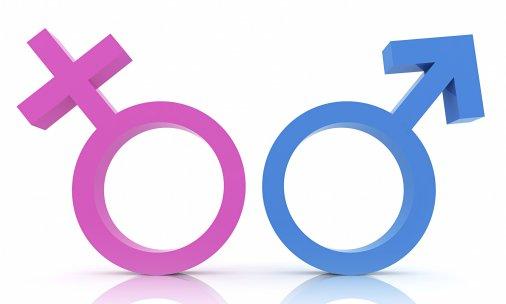 Журналісти Кіровоградщини класно пишуть на гендерну тематику