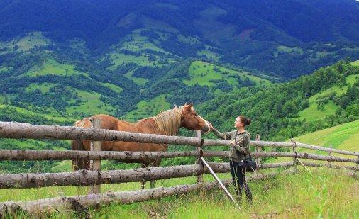 Сільський зелений туризм - від роз'єднаних садиб до територіальних кластерів