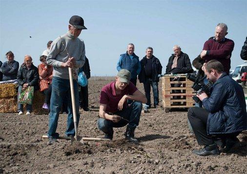 Від безробіття до успішного аграрного бізнесу: Як селяни Вінниччини заробляють на ягодах і відроджують село