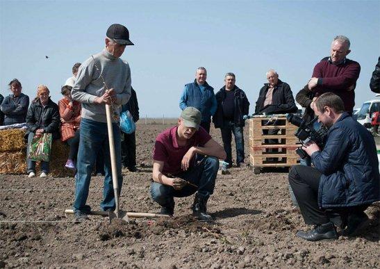 "с.Снітків. ""Тріада МК"", фото з сайту http://agravery.com"