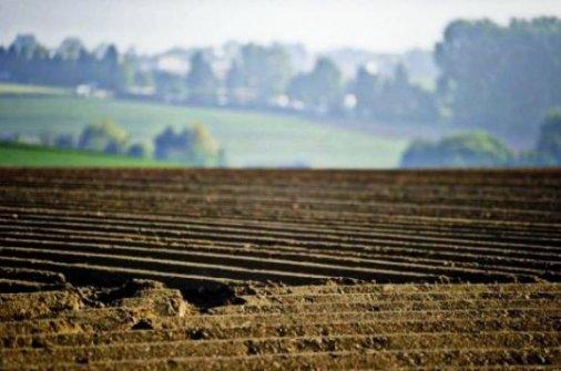 Довгоочікуванийкрок зроблено: Громади готуються до процесу передачі землі у власність ОТГ