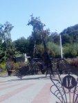 Долина Троянд у місті Черкаси