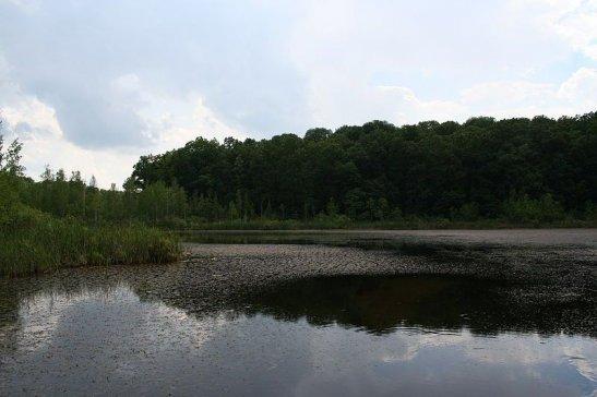 Озеро Берестувате ( Чорне) - фото з сайту ua-travel.com