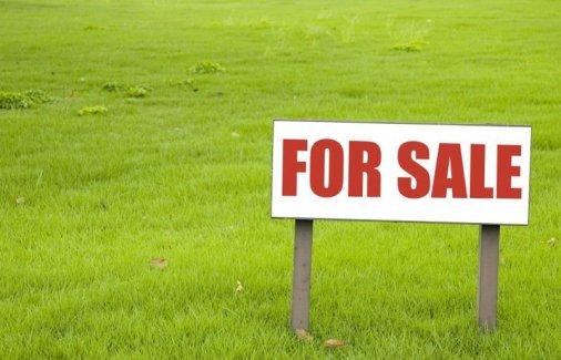 26 мільйонів надійшло до бюджетів від продажу земельних ділянок і прав на них