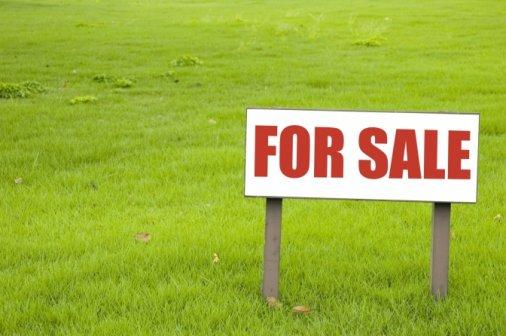 48,3 мільйона надійшло до бюджетів від продажу земельних ділянок