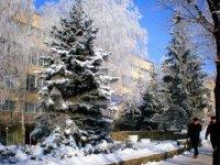 Бібліотека взимку