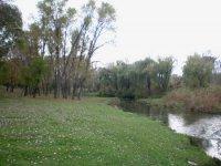Берега реки Сугоклея