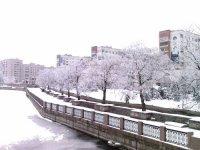 Набережная реки Ингул в Кировограде зимой