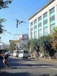 Улица Большая Перспективная - вид с улицы Гоголя