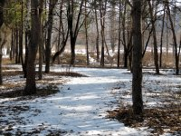 Парк Пушкина - зима. Фото - Анатолий Пугач, http://mikata.io.ua