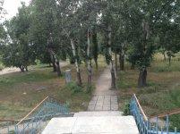 Парк Пушкина - лето 2013. Фото - Андрей Флоренко