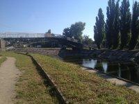 Парк Пушкина - лето 2015. Фото - Виктория Талашкевич